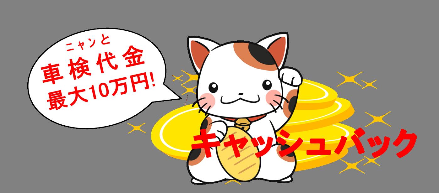 キャッシュバックキャンペーン2021猫